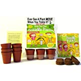"TickleMe Plant Greenhouse garden kit with science activity card to ("" Grow the only House Plant that closes its leaves and lowers it branches when you Tickle It! "") Great Unique Birthday Gift Idea!"