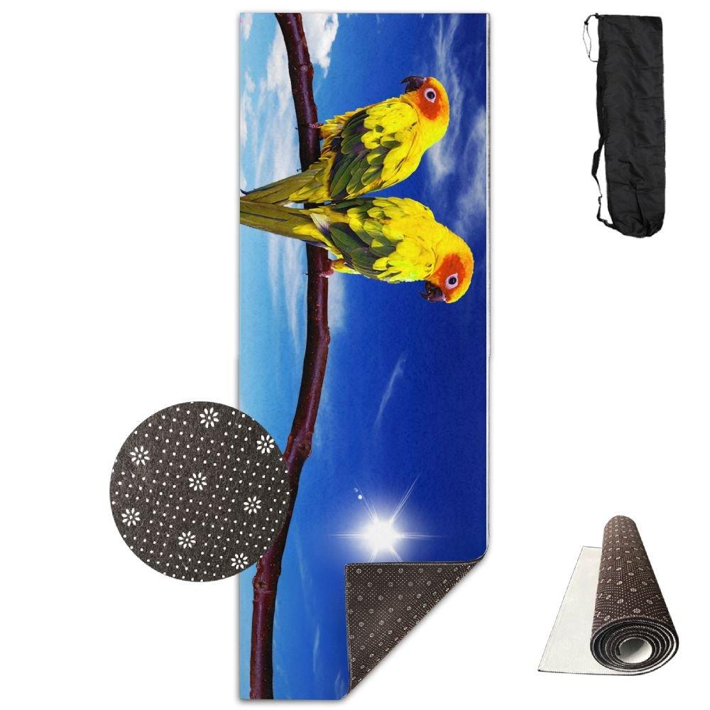 Amazon.com : Parrots Yoga Mat Towel For Bikram/Hot Yoga, Yoga And Pilates, Paddle Board Yoga, Sports, Exercise, Fitness Towel : Sports & Outdoors