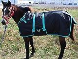 56'' 600D Miniature Weanling Donkey Pony Horse Foal Winter Blanket 51945