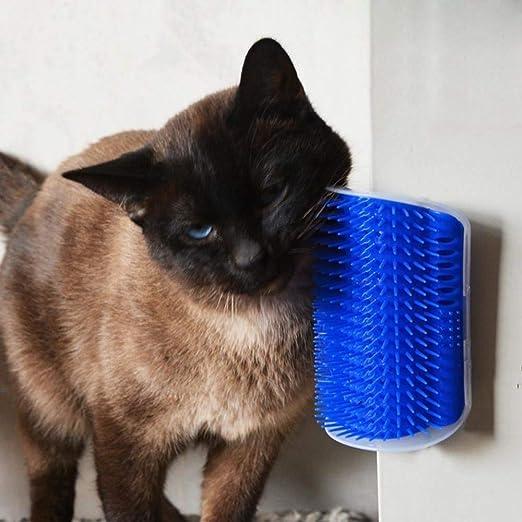 damastoreitalia® masajeador de Pared Angular para Gato Gatos Cepillo para Limpiar: Amazon.es: Productos para mascotas