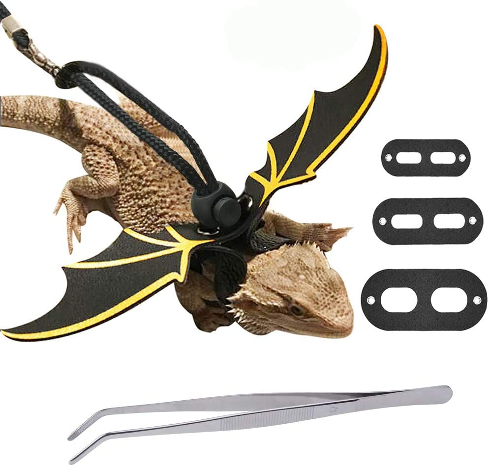 AUBBC Lizard Leash, Adjustable Bearded Dragon Harness with Reptile Feeding Pliers, Soft Leather Reptile Leash with Cool Gold Wing Suitable for Small, Medium and Large Reptiles Animals