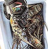 Lobster Gloves for Diving   Kevlar Spearfishing