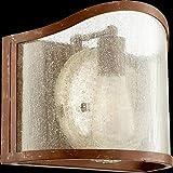 Quorum Lighting 5106-1-94, Salento Glass Wall Vanity Lighting, 1LT, 75 Watts, French Umber