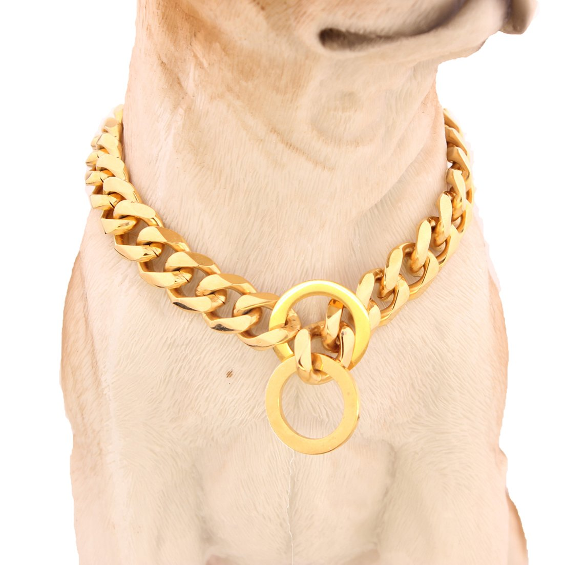 GZMZC 10/12/15/17/19mm Strong Gold Plated Stainless Steel Choker Dog Pet Chain Collars Necklace 12-36inch(24inches,12mm) by GZMZC