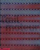 L'oeil moteur : Art optique et cinétique 1950-1975