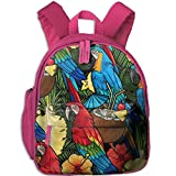 SARA NELL Backpack Macaw And Tropical Cocktail Preschool Kindergarten Boys Girls Bag