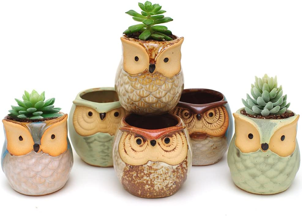 IMZ Set of 6 Owl Design Mini Ceramic Pot, Succulent Plant Pot, Cactus Planter Pot, Window Sill Bonsai Flower Pot Container with a Drainage Hole