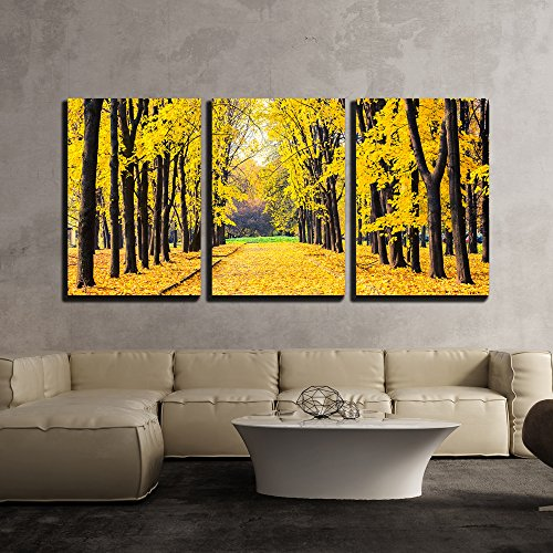 Alley in the Bright Autumn Park - Modern Home Decor