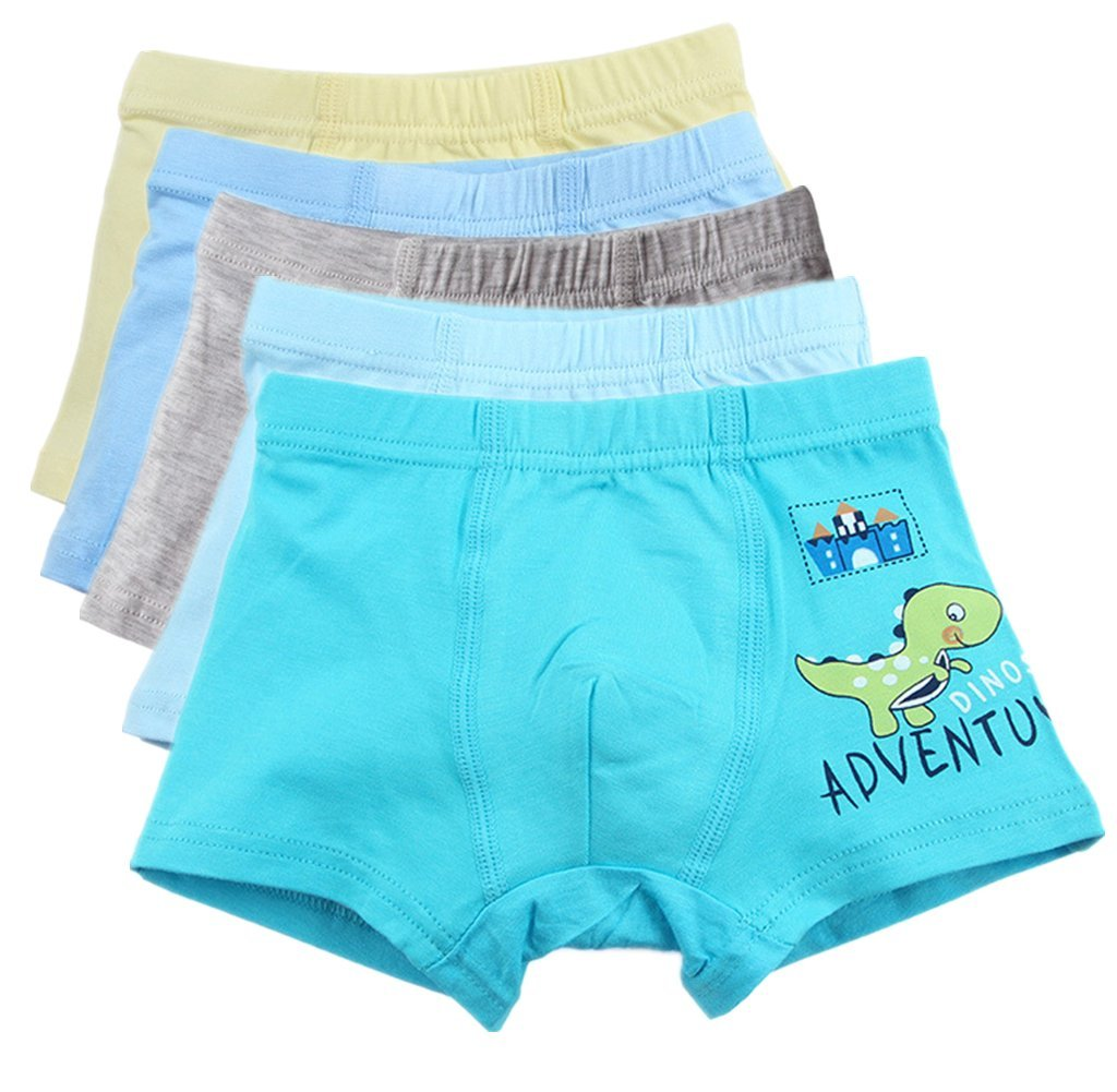So Aromatherapy Boy's Boxer Briefs Comfortable Cotton Short Toddler Underwear Set (4-6 Years, B)