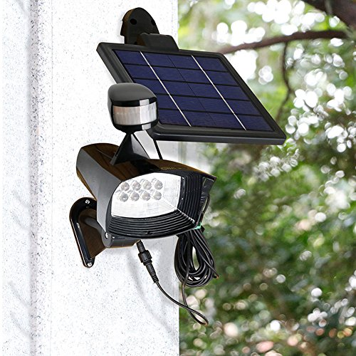 Solar Light 601 in Florida - 8