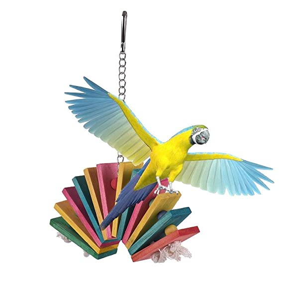 Juguete Loro Pájaro Bird Supplies juguete de cuerda loro que roe ...