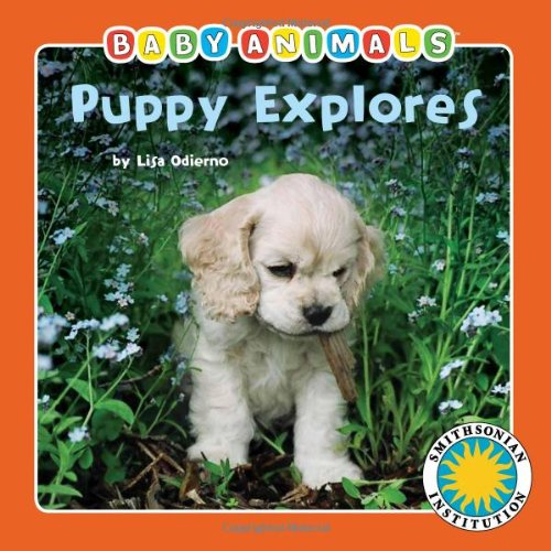 - Puppy Explores - a Smithsonian Baby Animals Book