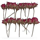 Fiori veri essiccati e pressati, 20 pezzi. Boccioli di rosa, colore: rosso.