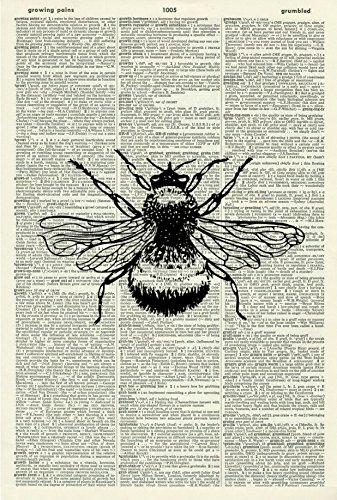 (Bee ART PRINT - VINTAGE ART PRINT - Animal Art Print - BLACK & WHITE ART PRINT - Illustration - Insect Picture - Vintage Dictionary Art Print - Wall Hanging - Home Décor - Book Print 22D)