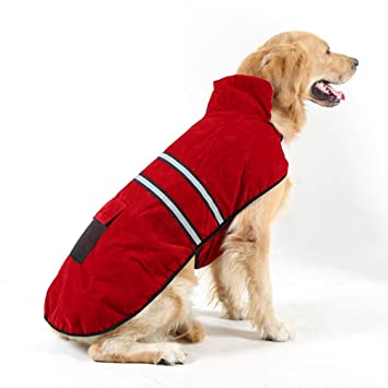UEETEK Chubasquero Perro Reflectante Ropa Perro Mediano Grande Invierno Algodón Talla XXL(Rojo Vino): Amazon.es: Productos para mascotas