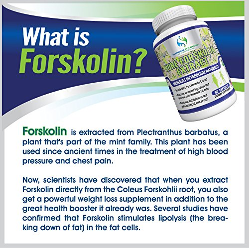 The Best PURE FORSKOLIN Extract on Amazon by Supreme Potential ® 450mg Maximum Strength-180 Capsules. Better than Rutin 500mg