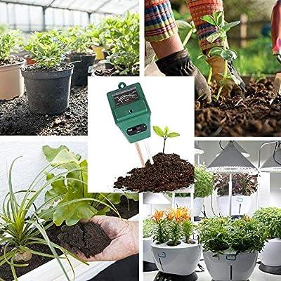 Tres en Uno Tierra Ensayador Tierra Medidor Ph Luz y Ph Acidez Analizador para Jardín Granja Césped Planta Grano Flor Hierba Cuidado (sin Batería Necesitaba): Amazon.es: Hogar