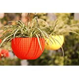 Oshi Greens 5 Pcs Rattan Baskets Waven Innovative Succulents Flower Pots with Chain Hanging Flower Pots in Multicolor