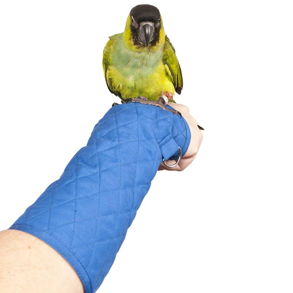 Parrot Arm Perch - Size: SMALL by Bigbird B003F6C03Q