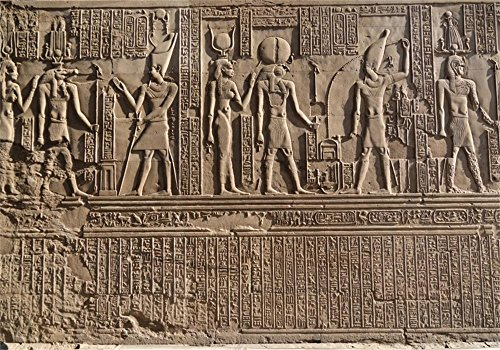 Laeacco 8x6.5ft Photography Background Ancient Egypt Wall Stone Carving Decorated Stone Hieroglyphics Egyptian Gods Engraved Sobek Kom Ombo Island Figures Children Kids Art Photos Video Studio (Wall Photo Mural Island)