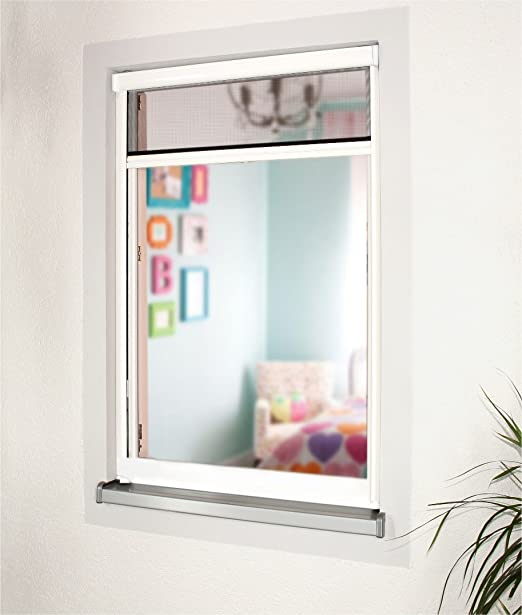 Insektenschutzrollo Schutz nach Maß für Fenster und Türen, Rollos ...