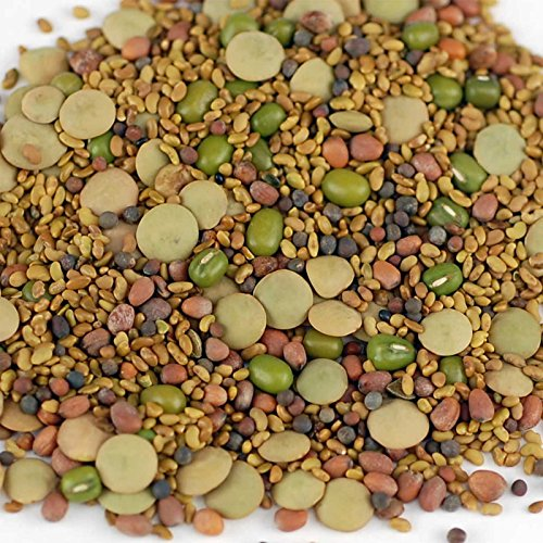 5 Part Salad Sprout Seed Mix -5 Lbs- Organic Sprouting Seeds: Radish, Broccoli, Alfalfa, Green Lentil & Mung Bean - For Sprouts by Handy Pantry (Image #1)