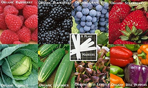 vegetable-seeds-fruit-seeds-combo-pack-organic-980-seeds-646263362983-self-fertile-8-free-plant-mark