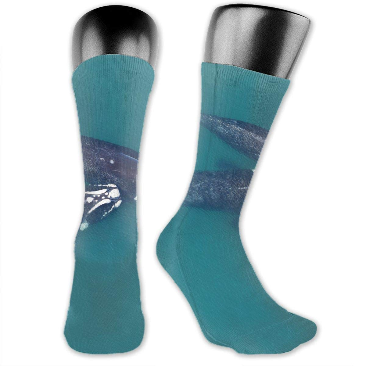 OLGCZM Marine Traffic with Whale Sailboat Fish with Cloud Waves Men Womens Thin High Ankle Casual Socks Fit Outdoor Hiking Trail