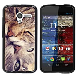 Caucho caso de Shell duro de la cubierta de accesorios de protección BY RAYDREAMMM - Motorola Moto X 1 1st GEN I XT1058 XT1053 XT1052 XT1056 XT1060 XT1055 - Cute Cat Friends