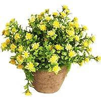 WINOMO Planta Artificial Potted Falsa Planta decorativa Bonsai
