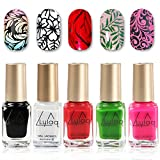 nail stamp polish - DR.MODE Nail Polish, 5 Bottles Nail Stamping Polish, Lasting Nail Varnish DIY Nail Art Stamp Printing Polish Lacquer