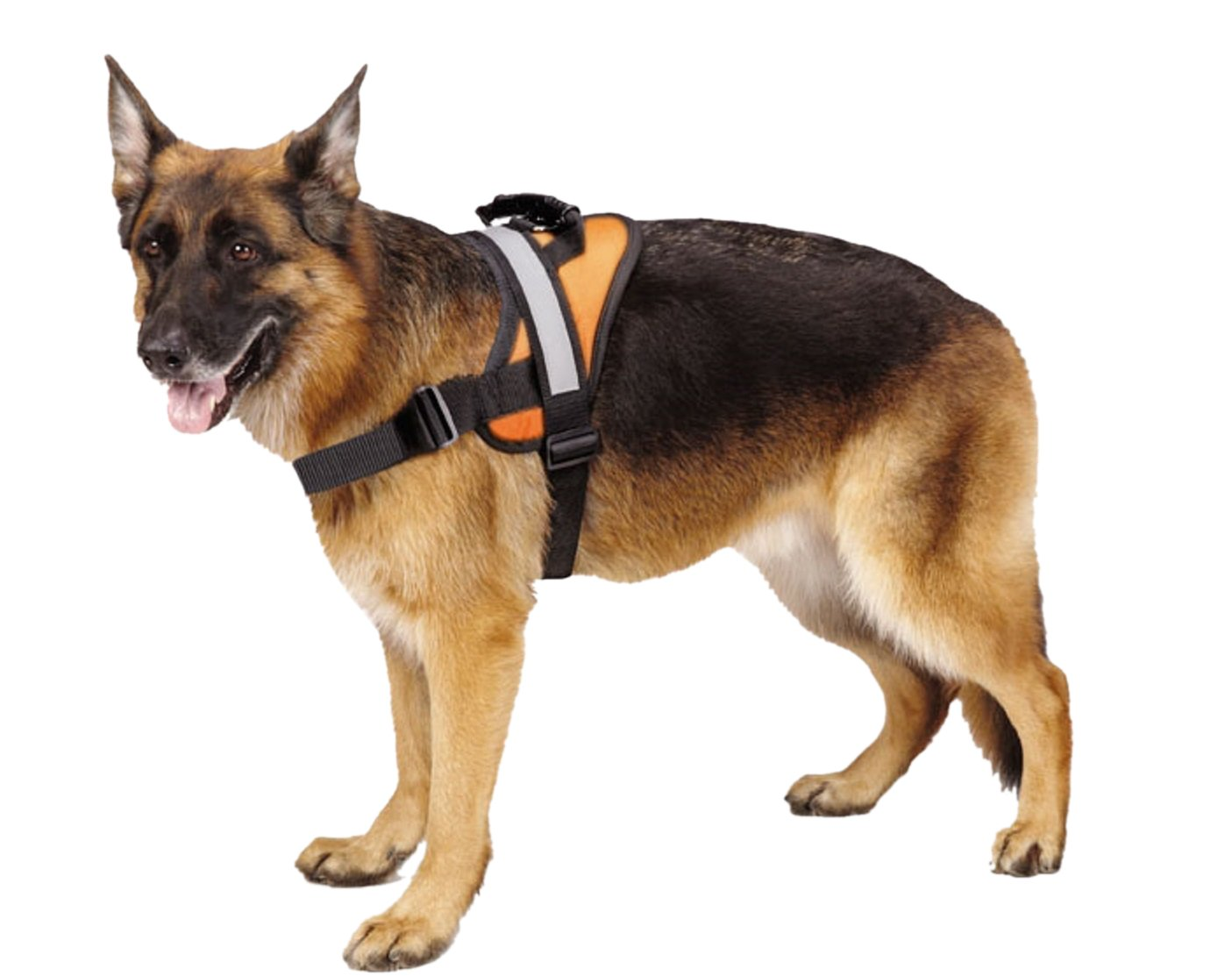 Big Dog Soft Reflective No Pull Harness HAOBO PP003-p1