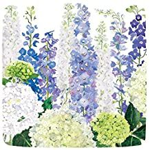 Caspari Entertaining with Delphiniums Square Salad/Dessert Plates, Purple, 8-Pack
