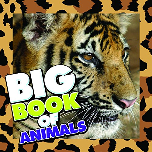 Big Book of Animals: Children's Book of Animal Fun Facts (Books For Kids Series) (Owl Pic Art)