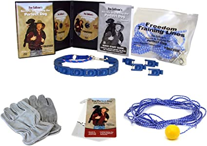 Don Sullivan Perfect Dog Fast Results Pet Training Package Small Free Shipping
