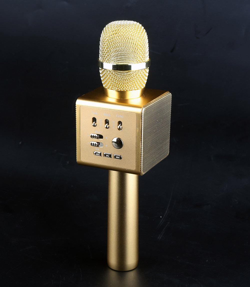 Wireless Microphone, Karaoke Microphone, With Bluetooth Speaker, Original Singing and Accompaniment Switch, Treble Bass Volume and Surround Effect Adjustment, Auto Switch Songs, Can Connect External Speaker WecanLight