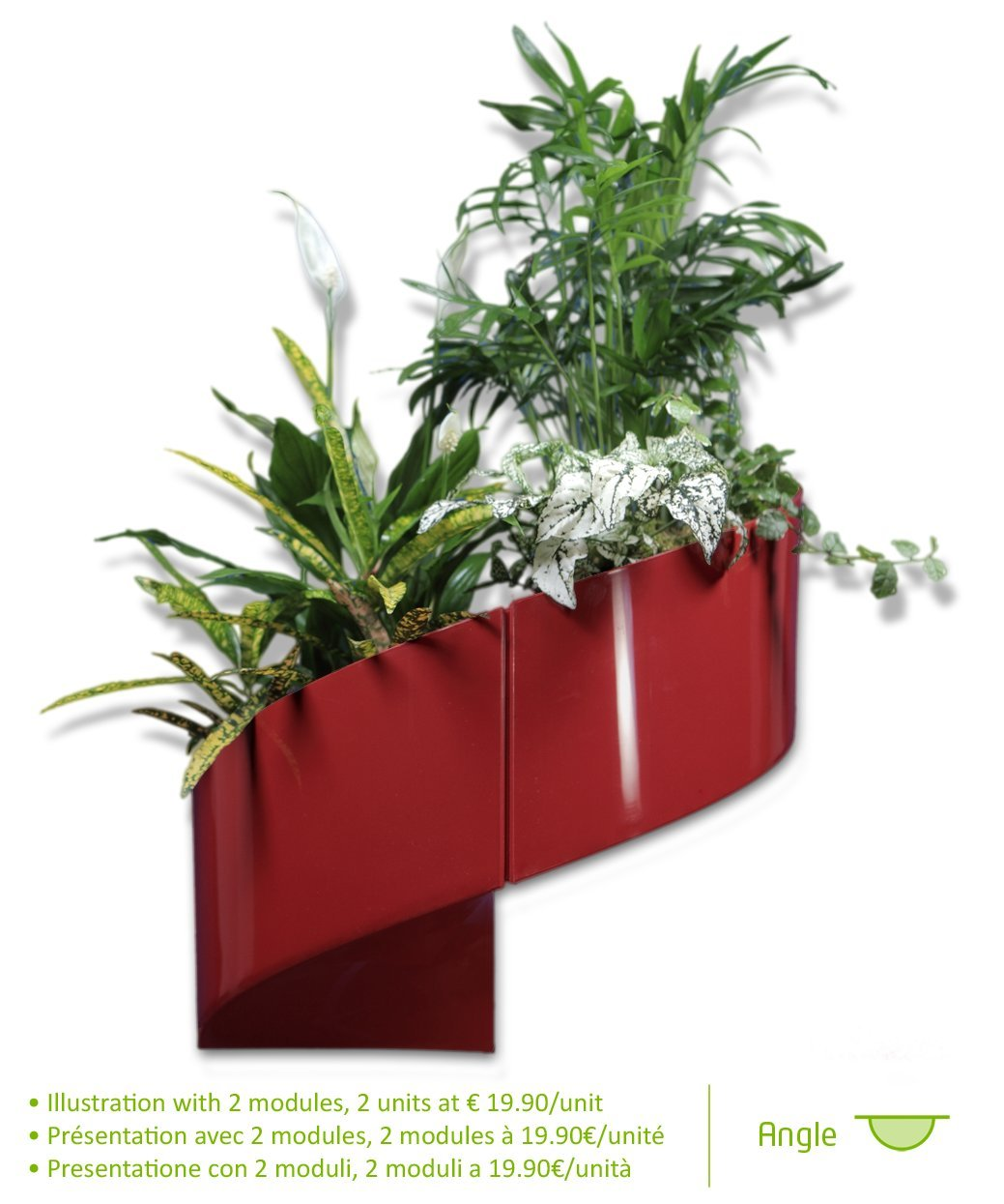 Plantes murales interieur design na06 jornalagora for Plante design d interieur