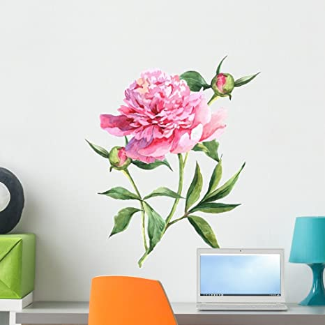 d12cf1a491 Amazon.com: Wallmonkeys Pink Peonies Wall Decal Peel Stick Floral Graphic  (24 in H x 24 in W) WM221100: Kitchen & Dining