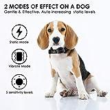 Dog Bark Collar - Effective Bark Collar for Dogs