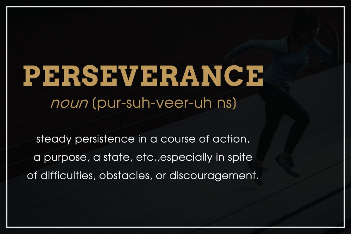Amazon JSC522 Definition Of Perseverance Dictionary Style