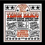 Ernie Ball Tenor Banjo Light Stainless Steel Loop End Set, .009 - .028