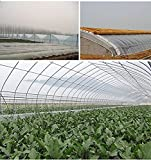 OriginA Clear Plastic Film Polyethylene Covering for Greenhouse and Grow Tunnel,3.1mil,6.5x75ft