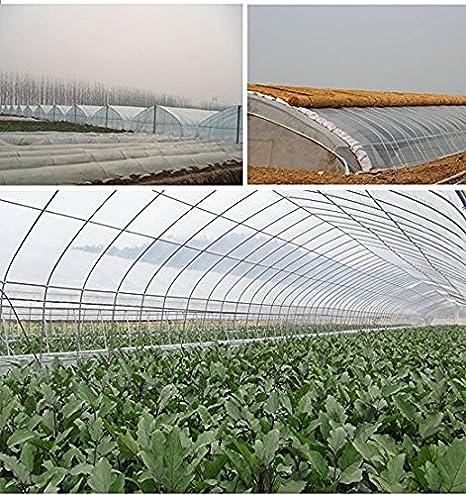 Awe Inspiring Amazon Com Origina Clear Plastic Film Polyethylene Download Free Architecture Designs Ogrambritishbridgeorg