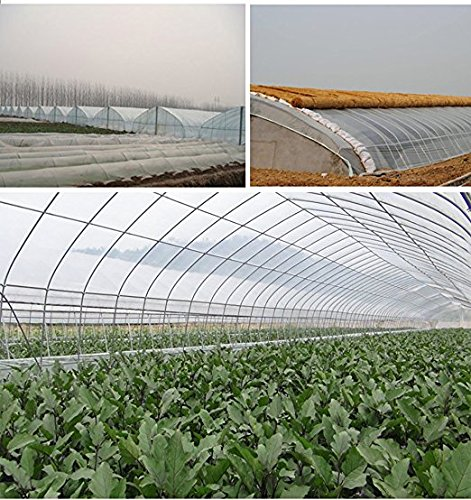 OriginA Greenhouse Clear Plastic Film UV Resistant Polyethylene Covering for Grow Tunnel and Garden Plant Cover, 6.5-Feet Width by 75-Feet Length
