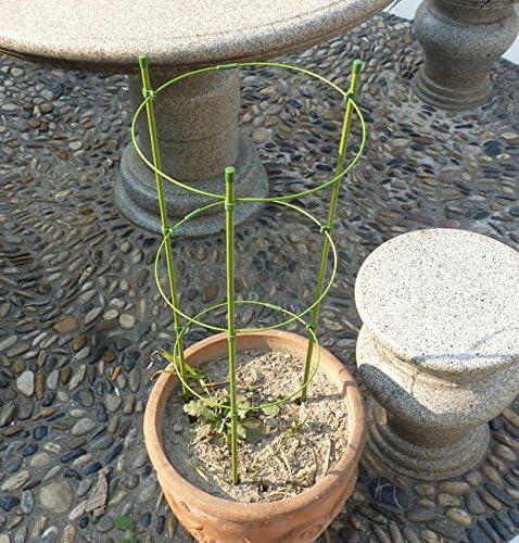 Soporte para plantas de jardín, 2 unidades de anillas para ...