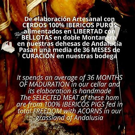 Estuche Paleta de Jamon Iberico de Bellota 100% DOP Jabugo Summun - 10 Sobres Loncheados 100 gr Jamon de Jabugo Pata Negra Cortado a mano y Envasados al Vacio - Regalos Ibericos Gourmet - 1 kg
