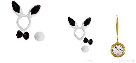 aparenteineso. Sombrero de Conejo con Diadema y Conejos ...