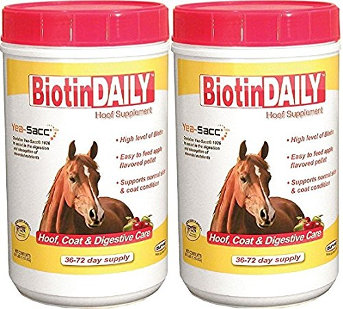 (2 Pack) Biotin Daily Hoof Care Supplement by Durvet