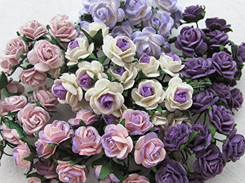 More buying choices for 100 pcs mini Rose mixed Purple color Mulberry Paper Flower 10 mm scrapbooking wedding doll house supplies card, - Ms Pearl Outlet