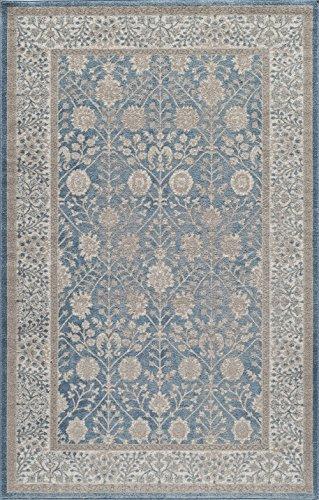 Momeni Rugs Persian Rug (Momeni Rugs KERMAKE-01BLU2030 Kerman Collection, Antique Persian Inspired Traditional Area Rug, 2' x 3', Blue)